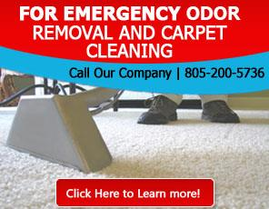 Blog | Carpet Cleaning Thousand Oaks, CA